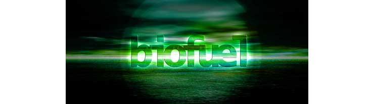 Επενδύσεις σε βιομάζα και βιοκαύσιμα