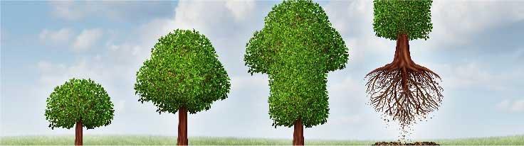 Αναβάθμιση πολύ μικρών & μικρών υφισταμένων επιχειρήσεων ΕΣΠΑ 2014-2020